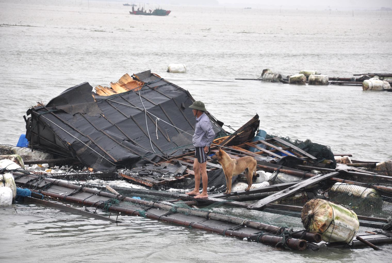 汫纸洲镇后田洋稟_汫洲渔民心情沉重的看着受损的渔排.